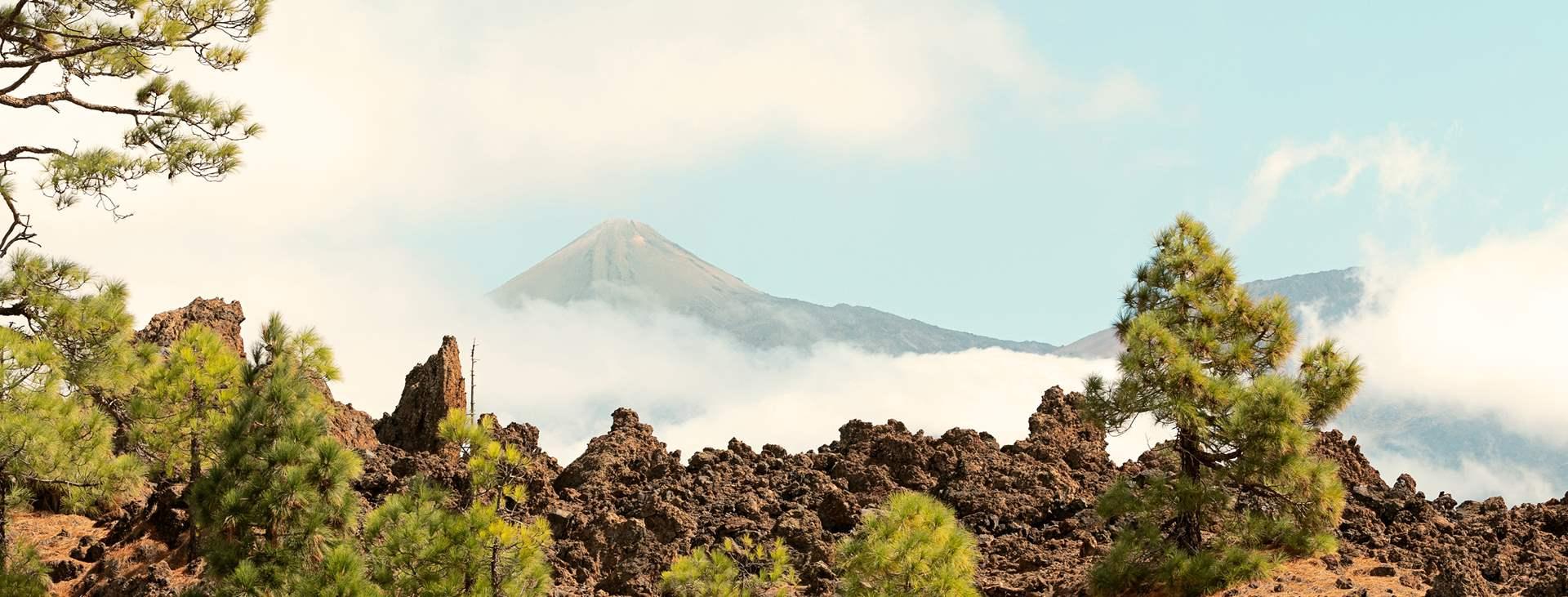 Boka din resa till Teneriffa, Kanarieöarna, med Ving