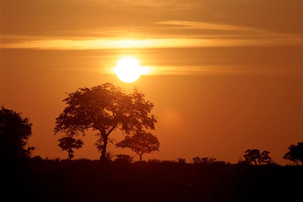 Krugerparken