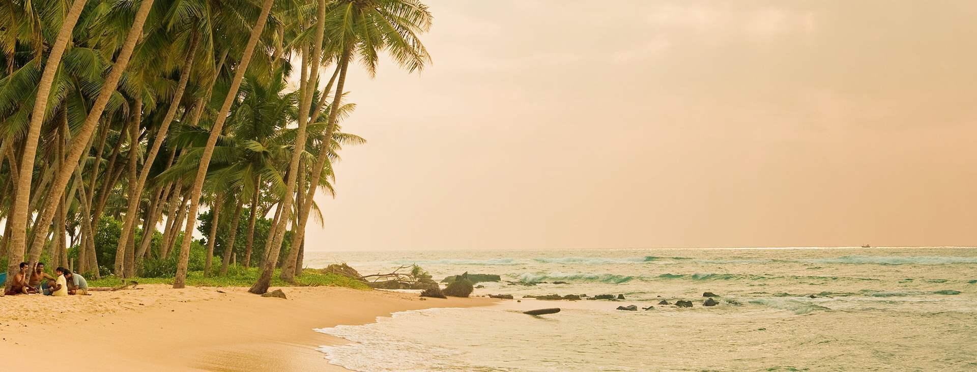 Boka en resa till Sri Lanka med Ving