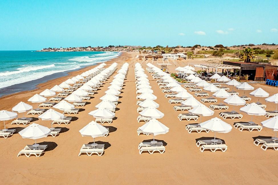 Njuta av en dag på stranden.