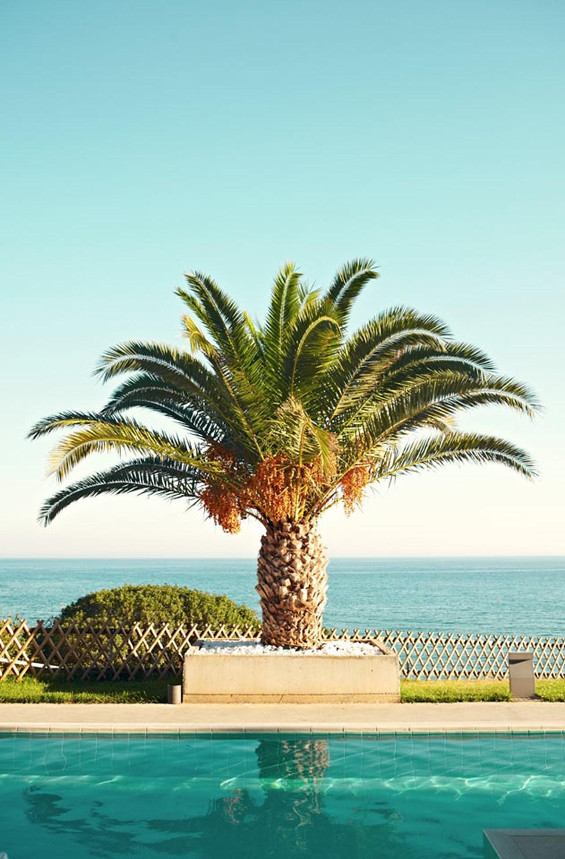 Från Ocean Beach Clubs pooler har du vacker utsikt över havet.