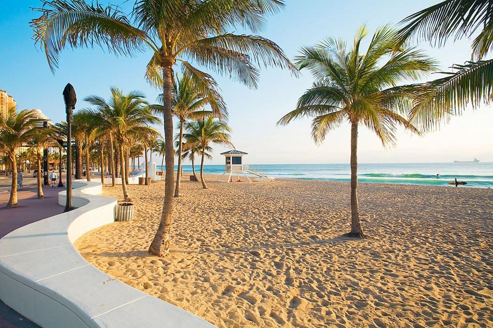 I Fort Lauderdale möter du milsvida palmkantade stränder
