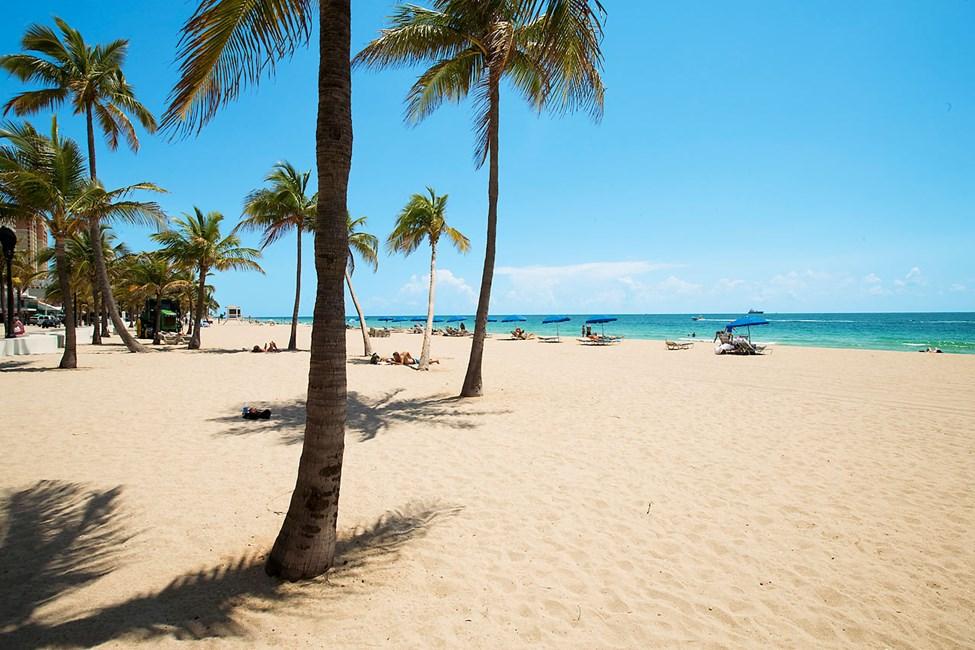 I Fort Lauderdale är klimatet en dröm och stränderna milslånga, vita och palmklädda