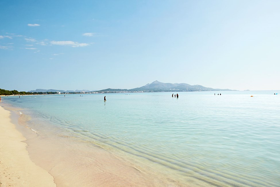Stranden utanför Sunwing Alcudia Beach