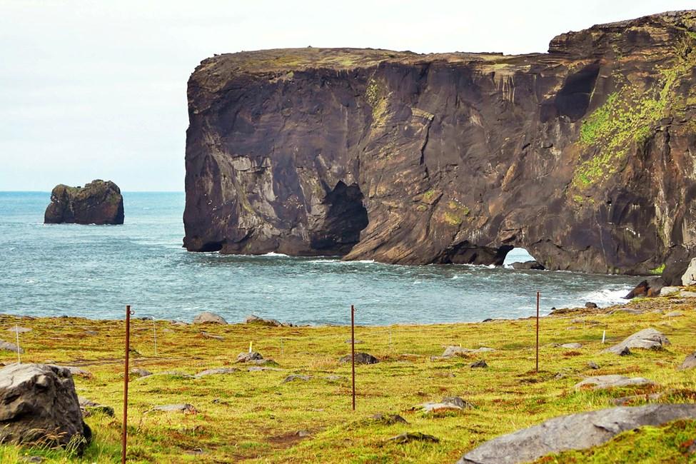 Från Reykjavik går det att genomföras härliga utflykter under en hel- eller halvdag, udden Dyrholaey når du på några timmar