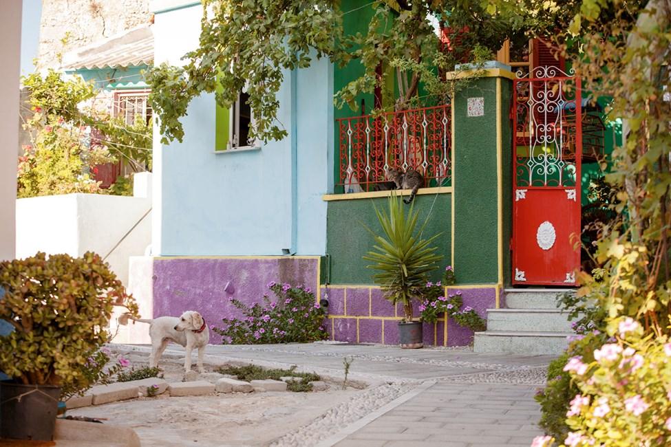 Koskinou är en liten by nära Kallithea
