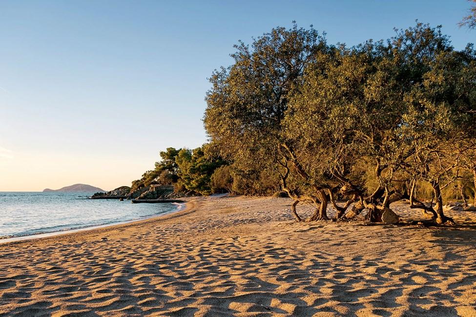 Hitta din favoritstrand längs Sithonias vackra kust