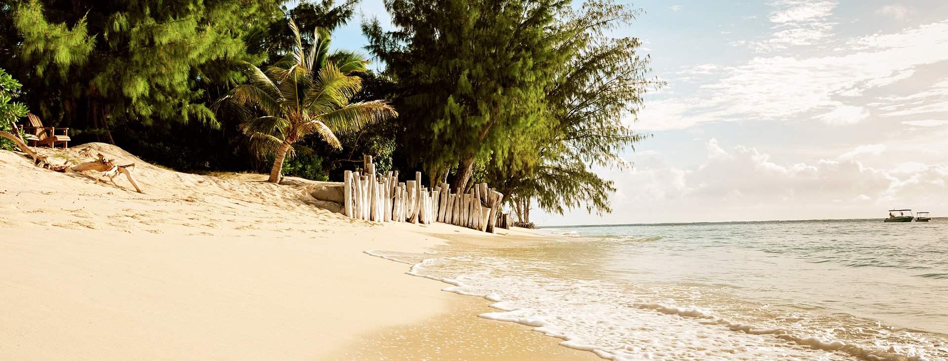 Boka din resa till Denis Island i Seychellerna