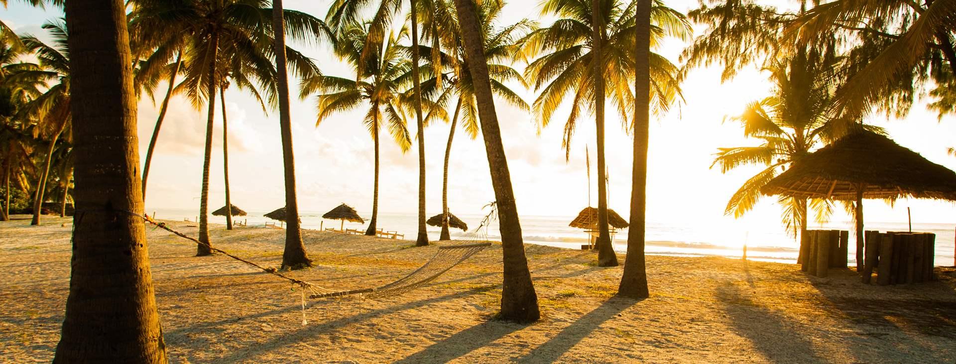 Zanzibars vita stränder och spännande historia lockar alla solälskare. Boka din resa till Zanzibar i Tanzania hos Ving.
