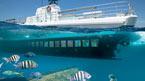 Seaworld Explorer - kan bokas hemifrån