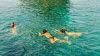 Snorklingssafari, ett undervattensäventyr - kan bokas hemifrån