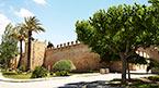 Upplev mer av Mallorca - kan bokas hemifrån