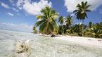 Saona Island - katamaran, kan bokas hemifrån